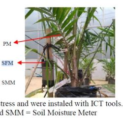 Image from Research Paper of Oil Palm installed with ICT instruments - SFM1, PSY1 and MP406