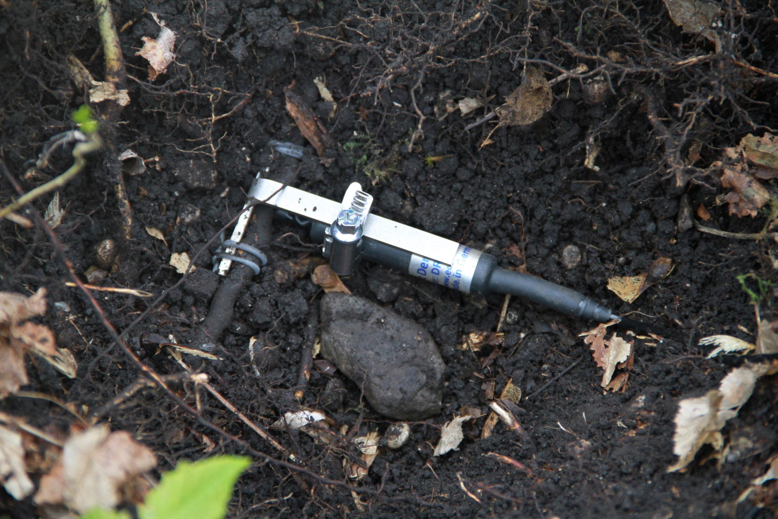 DRO Ecomatik Roots And Aquatic Plants Dendrometer